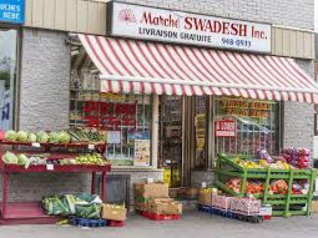 Marche Swadesh